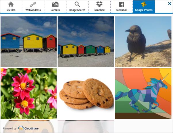 Google Photos select