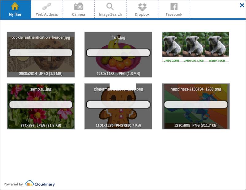 Upload widget main screen