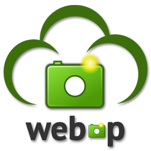 Using WebP file format selectively to boost site speed