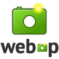 Check for WebP Browser Support to Dynamically Deliver Images