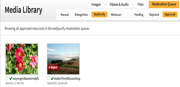 Webpurify_approved_moderationqueue