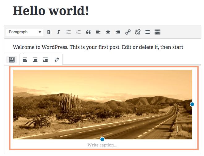 Cloudinary WordPress Visually Edit f_auto q_auto e_sepia