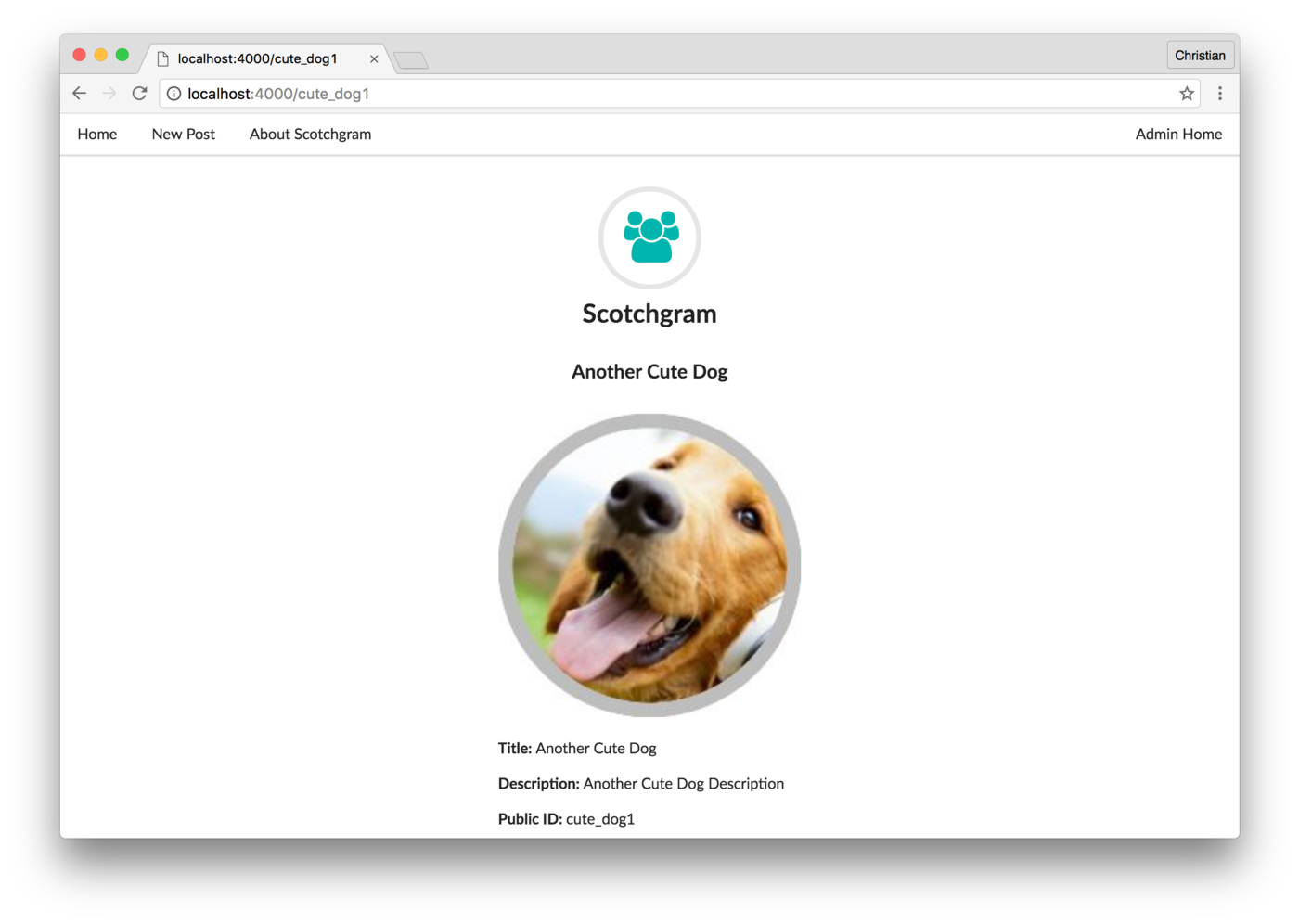 Build the Back-End For Your Own Instagram-style App with