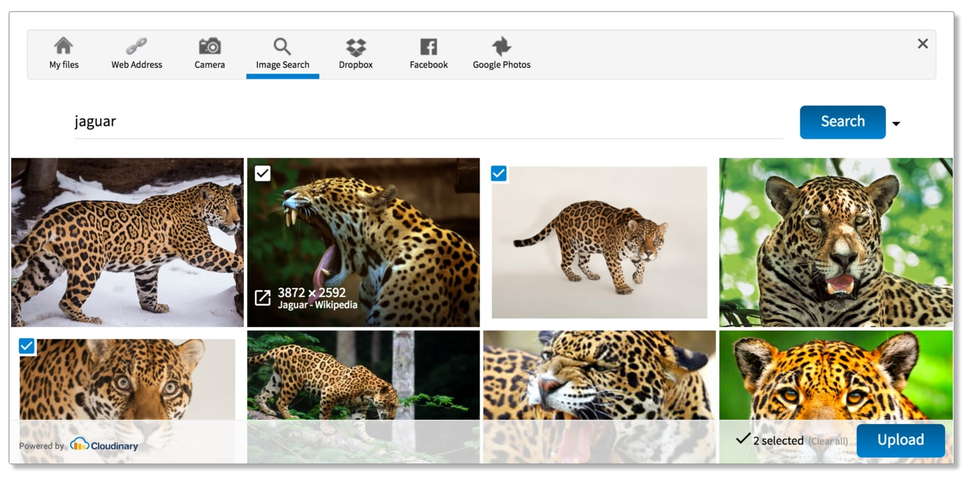 Upload widget - pick images from Google image search results